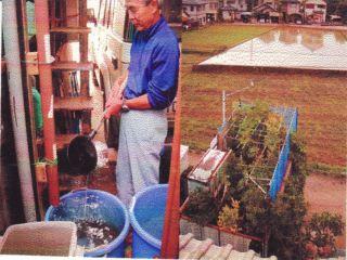 雨水桶と庭園俯瞰