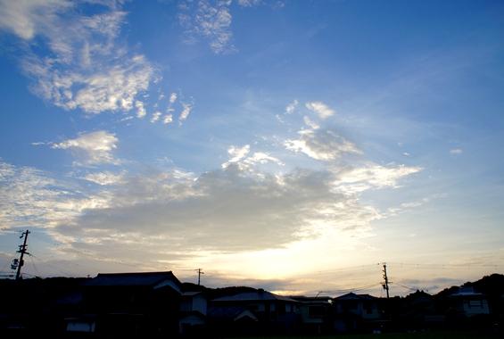 http://awaji-kenji-hiroko.com/swfu/d/DSC00221_R.JPG