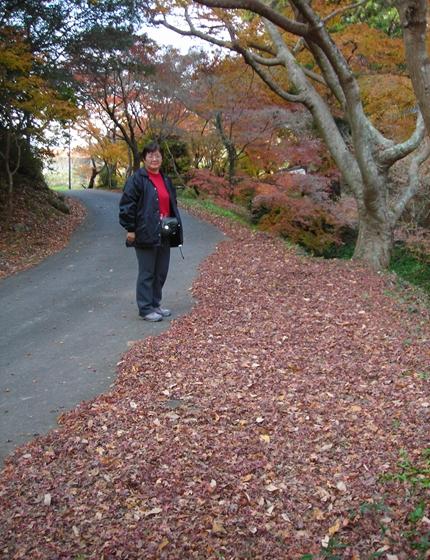 http://awaji-kenji-hiroko.com/swfu/d/DSCN4957_R.JPG