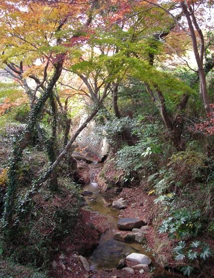 http://awaji-kenji-hiroko.com/swfu/d/DSCN4964_R.JPG