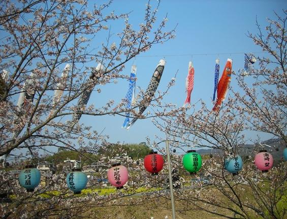 http://awaji-kenji-hiroko.com/swfu/d/s_084_R.JPG