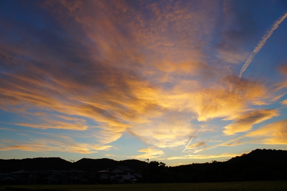http://awaji-kenji-hiroko.com/swfu/d/s_s_s_s_s_s_s_060_R.JPG