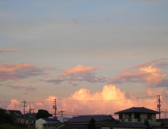 http://awaji-kenji-hiroko.com/swfu/d/s_s_s_s_s_s_s_s_051_R.JPG