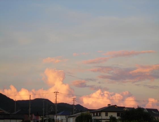 http://awaji-kenji-hiroko.com/swfu/d/s_s_s_s_s_s_s_s_052_R.JPG