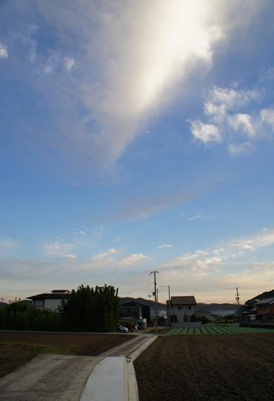 http://awaji-kenji-hiroko.com/swfu/d/s_s_s_s_s_s_s_s_s_059_R.JPG