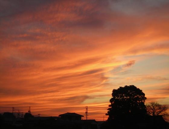 http://awaji-kenji-hiroko.com/swfu/d/s_s_s_s_s_s_s_s_s_s_005_R.JPG
