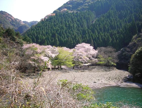 http://awaji-kenji-hiroko.com/swfu/d/s_s_s_s_s_s_s_s_s_s_025_R.JPG