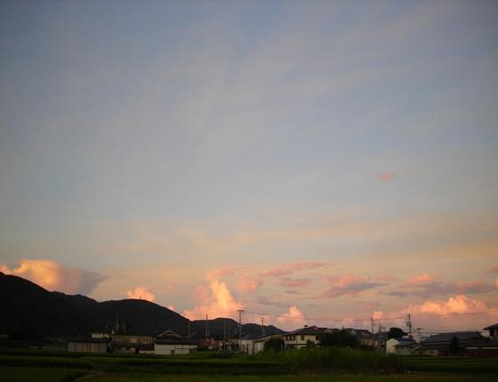 http://awaji-kenji-hiroko.com/swfu/d/s_s_s_s_s_s_s_s_s_s_042_R.JPG