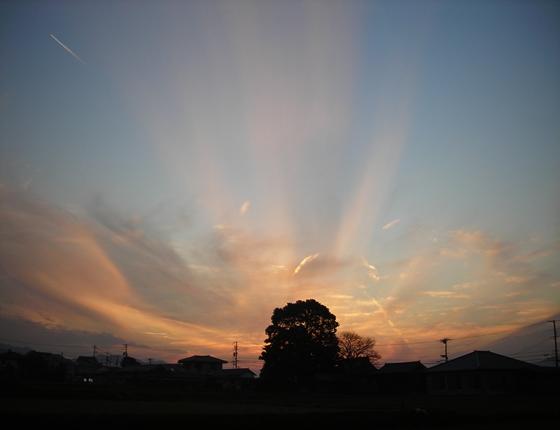 http://awaji-kenji-hiroko.com/swfu/d/s_s_s_s_s_s_s_s_s_s_s_029_R.JPG