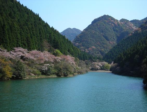 http://awaji-kenji-hiroko.com/swfu/d/s_s_s_s_s_s_s_s_s_s_s_s_s_015_R.JPG