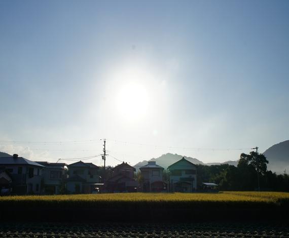 http://awaji-kenji-hiroko.com/swfu/d/s_s_s_s_s_s_s_s_s_s_s_s_s_s_041_R.JPG