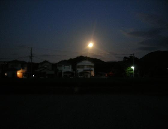 http://awaji-kenji-hiroko.com/swfu/d/s_s_s_s_s_s_s_s_s_s_s_s_s_s_s_s_035_R.JPG