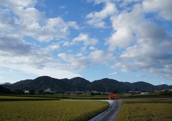 http://awaji-kenji-hiroko.com/swfu/d/s_s_s_s_s_s_s_s_s_s_s_s_s_s_s_s_s_s_s_s_s_s_s_025_R.JPG