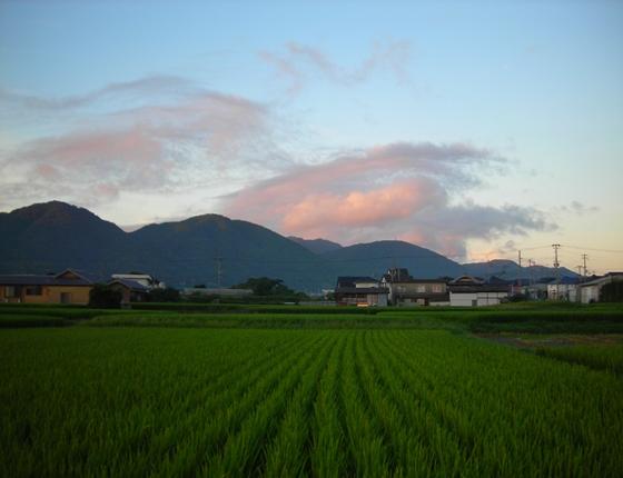 http://awaji-kenji-hiroko.com/swfu/d/s_s_s_s_s_s_s_s_s_s_s_s_s_s_s_s_s_s_s_s_s_s_s_s_s_s_s_s_s_s_017_R.JPG