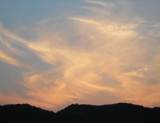 http://awaji-kenji-hiroko.com/swfu/d/s_s_s_s_s_s_s_s_s_s_s_s_s_s_s_s_s_s_s_s_s_s_s_s_s_s_s_s_s_s_s_s_s_s_s_s_011_R.JPG